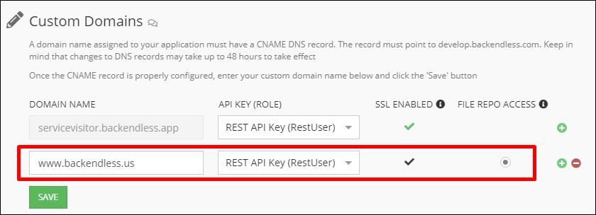 custom-domain-example