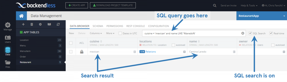 Search Data With SQL Query