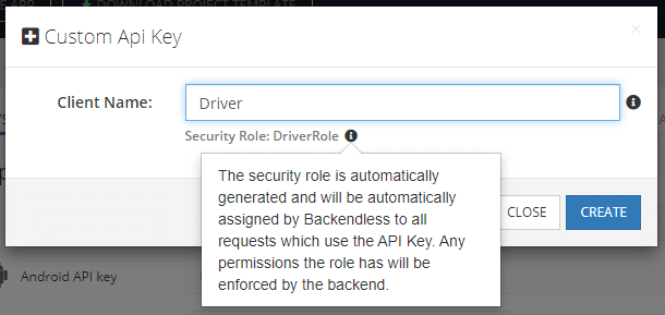 Create Custom API Key and Automatically Generate Security Role