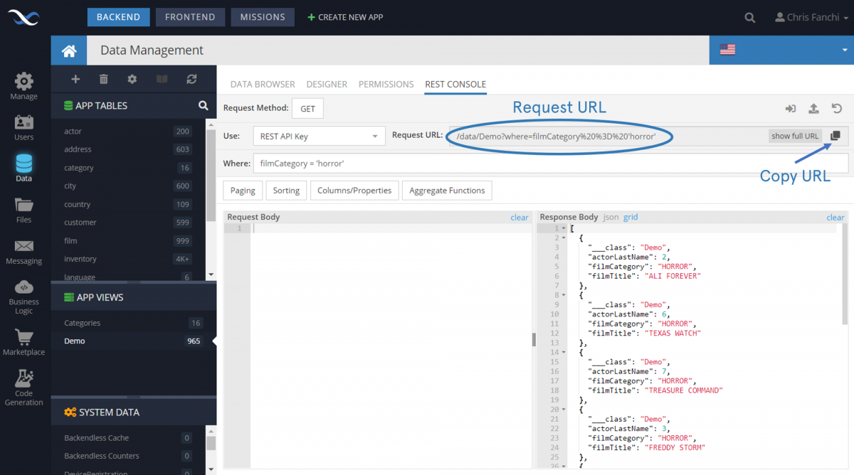 Views REST Console Example with SQL