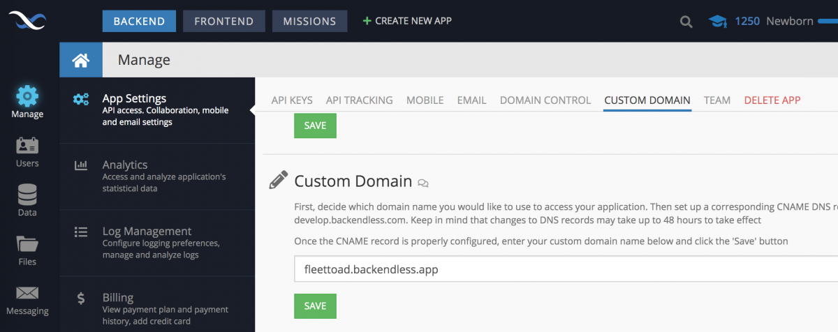 Set Custom Subdomain in Backendless Console